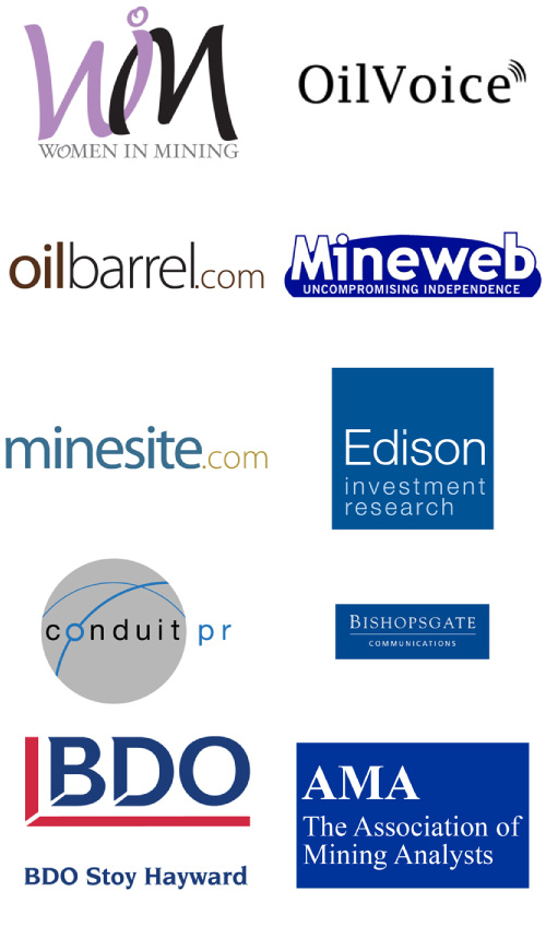 Logos of companies that partner with Opus Executive